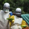 SCIENTISTS DISCOVER HOW EBOLA VIRUS DISABLES IMMUNE RESPONSE