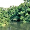 THREE FACTS YOU SHOULD KNOW ABOUT EBOLA RIVER