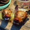 5 PEOPLE FOUND DEAD AFTER CONSUMPTION OF DOG MEAT