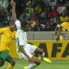 WE WANT TO STOP EAGLES – SOUTH AFRICA