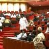 President Buhari must be screened if he nominates himself as petroleum minister – Senate