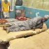 Governor, Umaru Tanko of Nassarawa State Sleeps on Mattress at Govt College