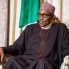 Nigerians' reputation for crime has made them unwelcome in Europe and America-  President Buhari