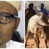 President Buhari condemns attack by Fulani herdsmen on Enugu community