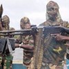 Navy not equipped to arrest our members — Niger Delta Avengers
