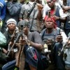 Soyinka, Kalu listed in Niger Delta Avengers  dialogue team with FG